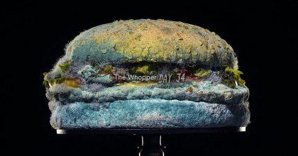 VIDEA: Ceny Grand Clio rozdány! Nejvíce jich získal zkažený burger